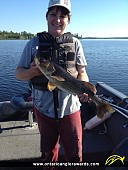 """26"""" Walleye caught on Lake of the Woods"""