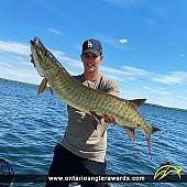"""36.5"""" Muskie caught on Kawartha Lake"""