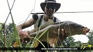 "31.5"" Carp caught on Thames River"