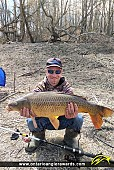 """30"""" Carp caught on South Nation River"""
