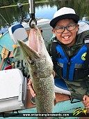 """41"""" Northern Pike caught on Indian Lake"""