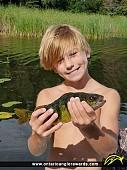 """13"""" Yellow Perch caught on Paddy Lake"""