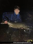 """41.5"""" Chinook Salmon caught on Bronte Creek"""
