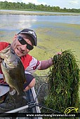 """18"""" Largemouth Bass caught on Rideau River"""