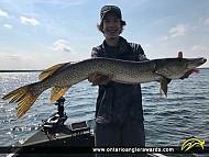 "34"" Northern Pike caught on Sturgeon Lake"