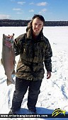 """32"""" Rainbow Trout caught on Manitoulin Island"""