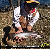 """20"""" Brook/Speckled Trout caught on Manitou River"""