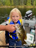 """18.25"""" Smallmouth Bass caught on Dryberry Lake"""
