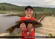 """21"""" Smallmouth Bass caught on Larder Lake"""