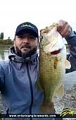 """21"""" Largemouth Bass caught on Lake Ontario"""