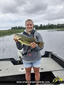 "18.5"" Largemouth Bass caught on Lake Nipissing"