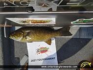 "18"" Smallmouth Bass caught on Big Hawk Lake"