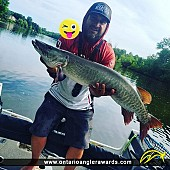"""41"""" Muskie caught on Rideau River"""