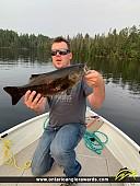 "21"" Smallmouth Bass caught on Ottawa River"