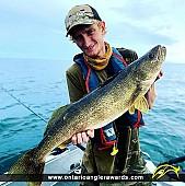"31"" Walleye caught on Lake Ontario"