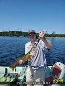 """26.5"""" Walleye caught on Crotch Lake"""