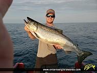 """38.5"""" Chinook Salmon caught on Lake Ontario"""
