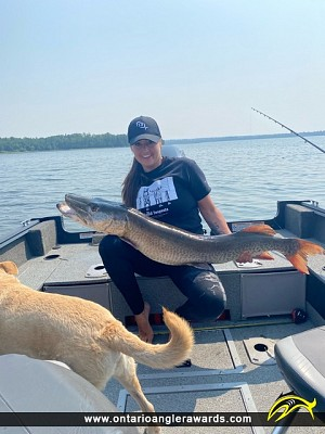 """52"""" Muskie caught on Eagle Lake"""