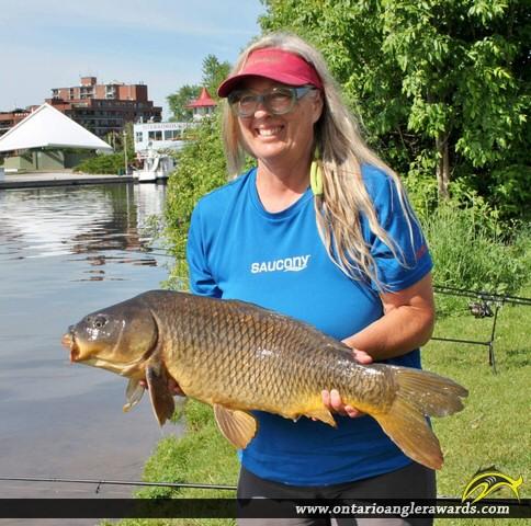 "31"" Carp caught on Little Lake"