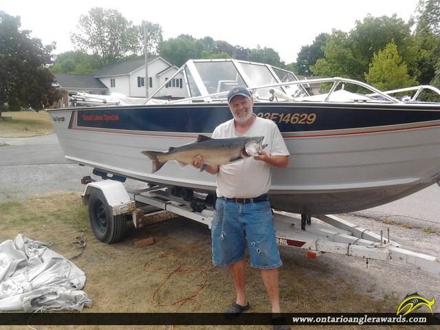 """375"""" Chinook Salmon caught on Lake Ontario"""