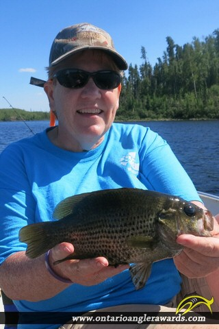 "10.00"" Rock Bass caught on Moberley Lake"