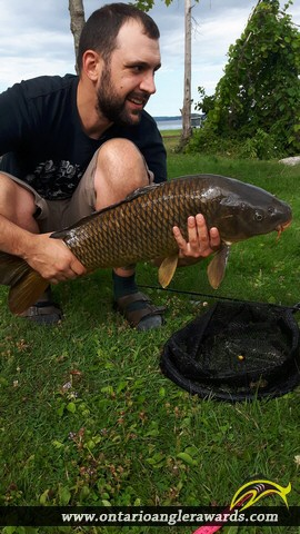 """30"""" Carp caught on Rice Lake"""
