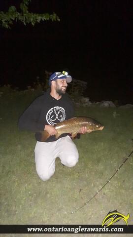 """31"""" Carp caught on Rice Lake"""