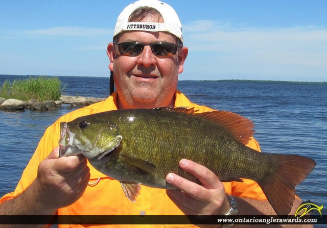 """19.5"""" Smallmouth Bass caught on Lake of the Woods"""