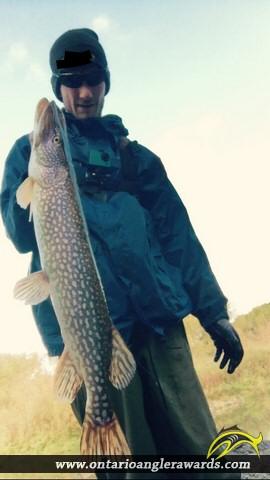 "33"" Northern Pike caught on Conastoga River"