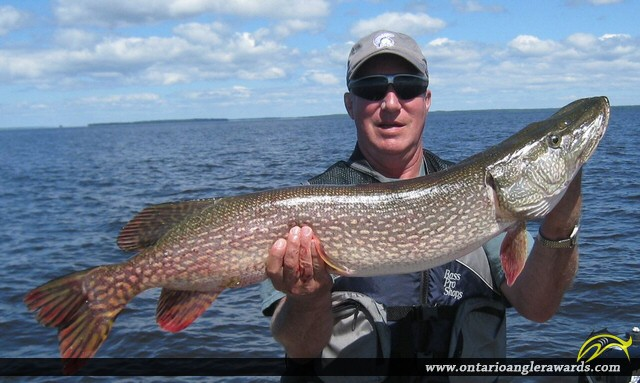 """38"""" Northern Pike caught on Lake of the Woods"""