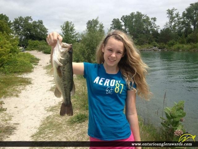 """18"""" Largemouth Bass caught on Lake Ontario"""