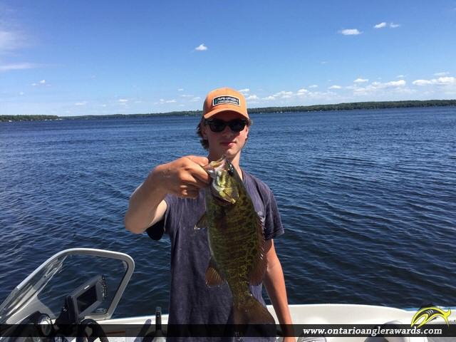 """19"""" Smallmouth Bass caught on Sturgeon Lake"""