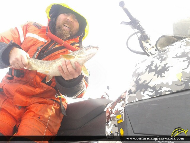 "26"" Lake Trout caught on Lake Rosseau"