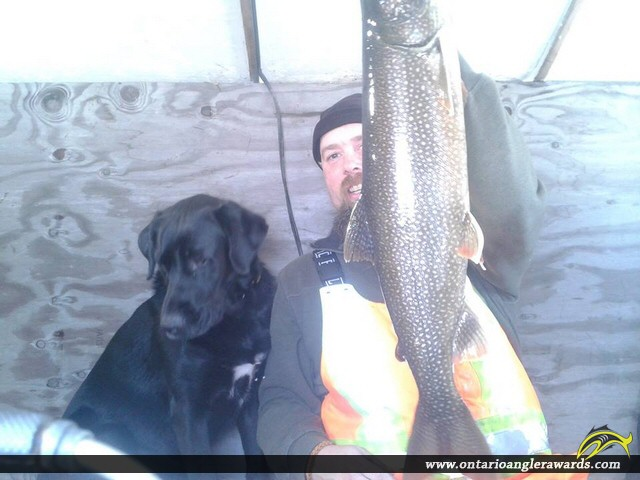 "27"" Lake Trout caught on Lake Rosseau"