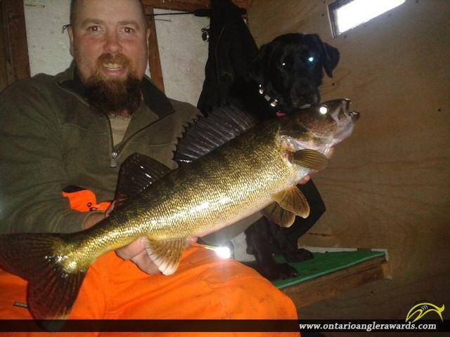 """27"""" Walleye caught on Lake Rosseau"""