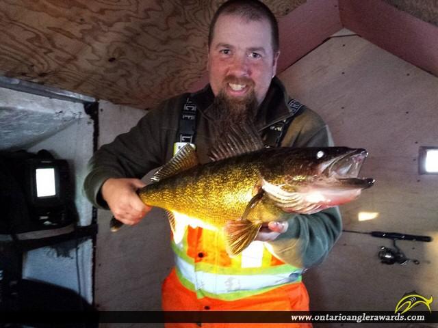"""30"""" Walleye caught on Lake Rosseau"""