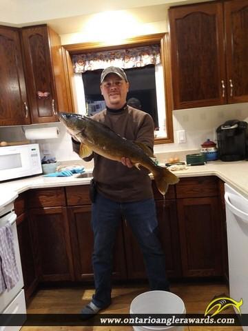 """26.75"""" Walleye caught on Kashagawigamog Lake"""