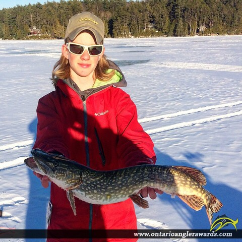 """33"""" Northern Pike caught on Green Lake"""
