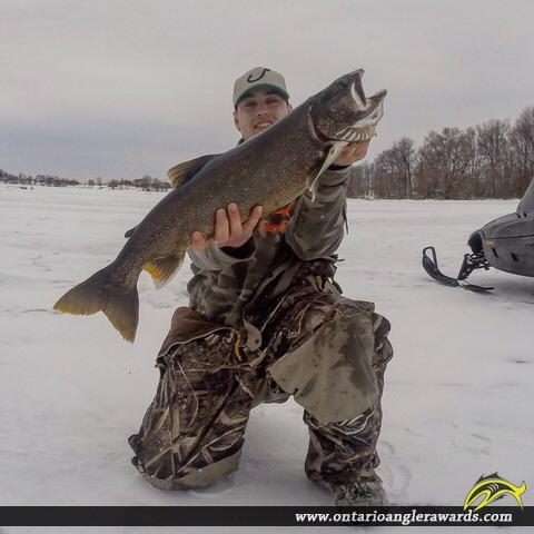 """33.5"""" Lake Trout caught on Muskrat lake"""