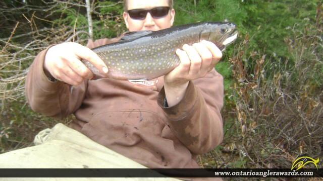"""18.25"""" Brook/Speckled Trout caught on Markoonis Lake"""