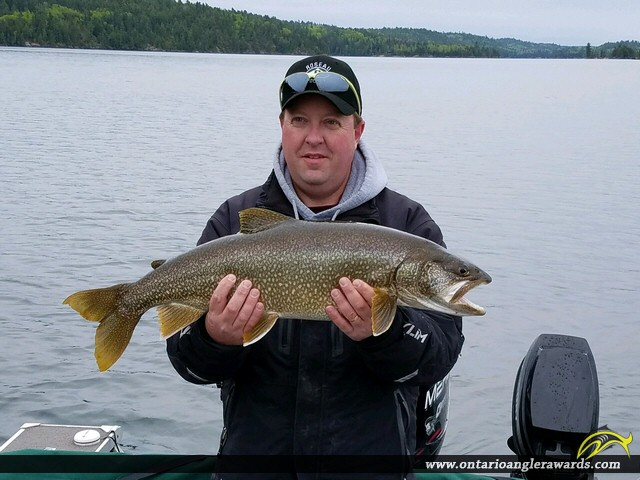"31.75"" Lake Trout caught on Lake of the Woods (Whitefish Bay)"