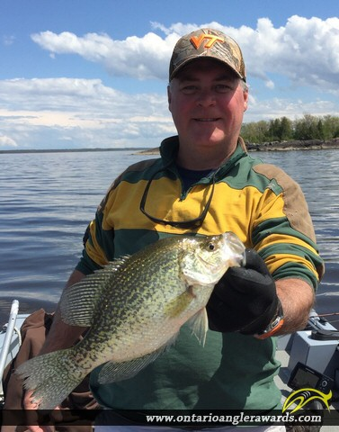 """13"""" Black Crappie caught on Lake of the Woods"""