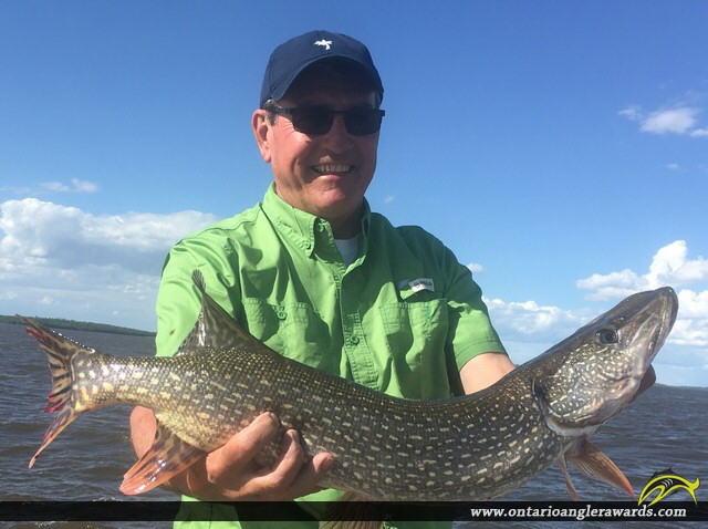 """32"""" Northern Pike caught on Lake of the Woods"""