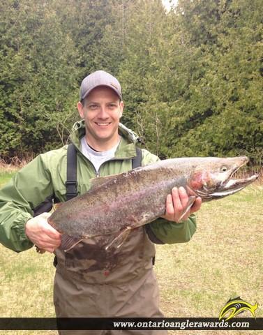"26.5"" Rainbow Trout caught on Lake Ontario"