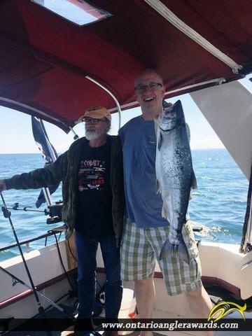 """32"""" Coho Salmon caught on Lake Ontario"""