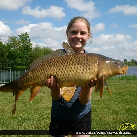 "32"" Carp caught on Maitland River"