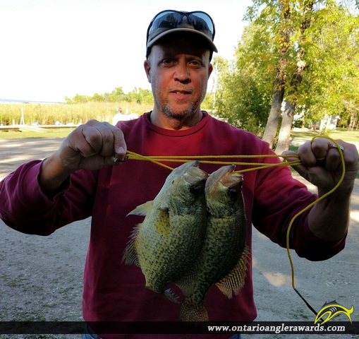 """12.5"""" Black Crappie caught on Lake of the Woods"""