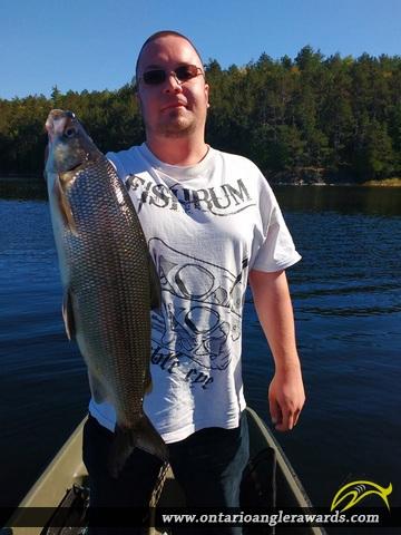 """22"""" Whitefish caught on Secret Lake"""