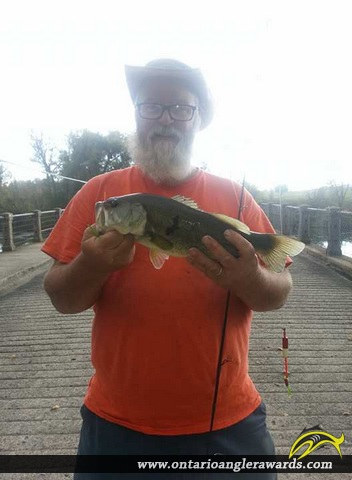 "19.25"" Largemouth Bass caught on Welland River"