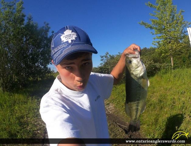 "18"" Largemouth Bass caught on Ponds on Union Street"